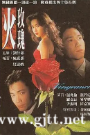 [TVB][1992][火玫瑰][温碧霞/温兆伦/罗嘉良][国粤双语外挂中字][GOTV源码/TS][40集全/单集约870M]