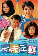 [TVB][1994][一夫三妻][廖伟雄/恬妞/黎彼得][国粤双语无字][Mytvsuper源码/1080P][20集全/每集约1.3G]