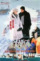 [ATV][1993][银狐][黄日华/江华/伍咏薇][国粤双语外挂中字][FOX源码/1080P][30集全/每集约1.6G]