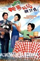 [TVB][2001][肥婆奶奶扭计媳][江华/向海岚/沈殿霞][国粤双语外挂中字][GOTV源码/TS][20集全/每集890M]