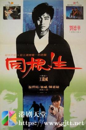 [中国香港][1989][同根生][刘德华/林威/温碧霞][国粤双语中字][1080P][MKV/2.06G]