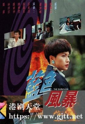 [TVB][1991][蓝色风暴][罗嘉良/邵美琪/陈秀雯][国粤双语/外挂简繁中字][GOTV源码/MKV][20集全/每集约820M]