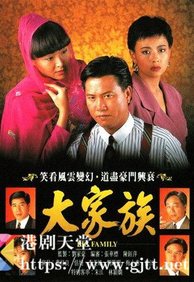 [TVB][1991][大家族][万梓良/恬妞/曾江][国粤双语外挂简繁中字][GOTV源码/MKV][30集全/每集约830M]