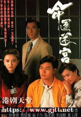 [TVB][1991][命运迷宫][甄子丹/黎美娴/曾华倩][国粤双语/外挂SRT简繁中字][GOTV源码/MKV][15集全/单集约830M]