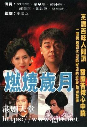 [TVB][1990][燃烧岁月][刘青云/罗慧娟/邵仲衡][国粤双语外挂SRT简繁字幕][GOTV源码/MKV][20集全/单集约840M]