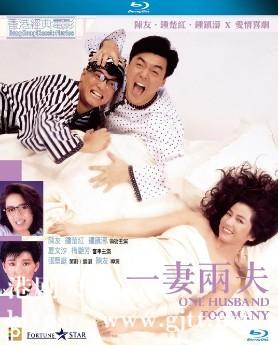 [中国香港][1988][一妻两夫][钟镇涛/陈友/钟楚红][国粤双语中字][1080P][MKV/4.25G]