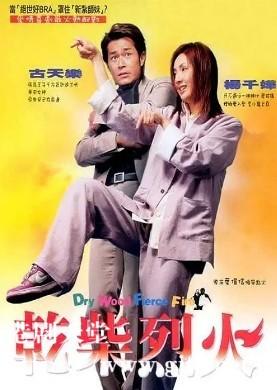 [中国香港][2002][干柴烈火][古天乐/杨千嬅/陈慧珊][国粤双语中字][1080P][MKV/2.29G]